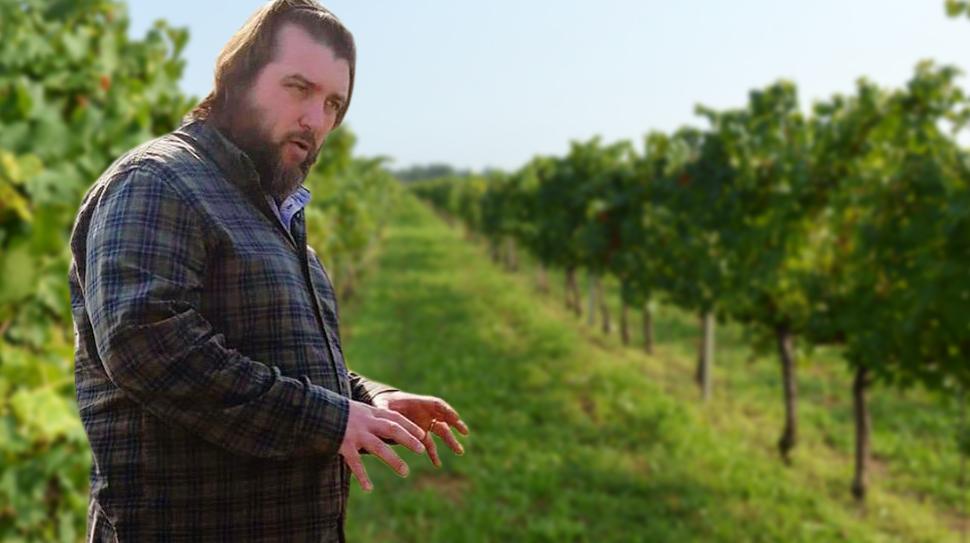 Nicola Gatta, viticoltore spumante Metodo Classico